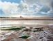 La baie de Talmont à marée basse - huile sur toile sur toile