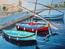 Bateaux de pêche à Collioure