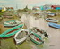 Eventail de barques ostréicoles à Cayenne (17)