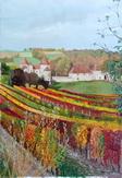 Chateau Chapeau Cornu - Vignieu 38890- les 4 saisons - l`automne - huile sur toile