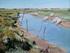 Paysage de marais avec vaches en charente maritime